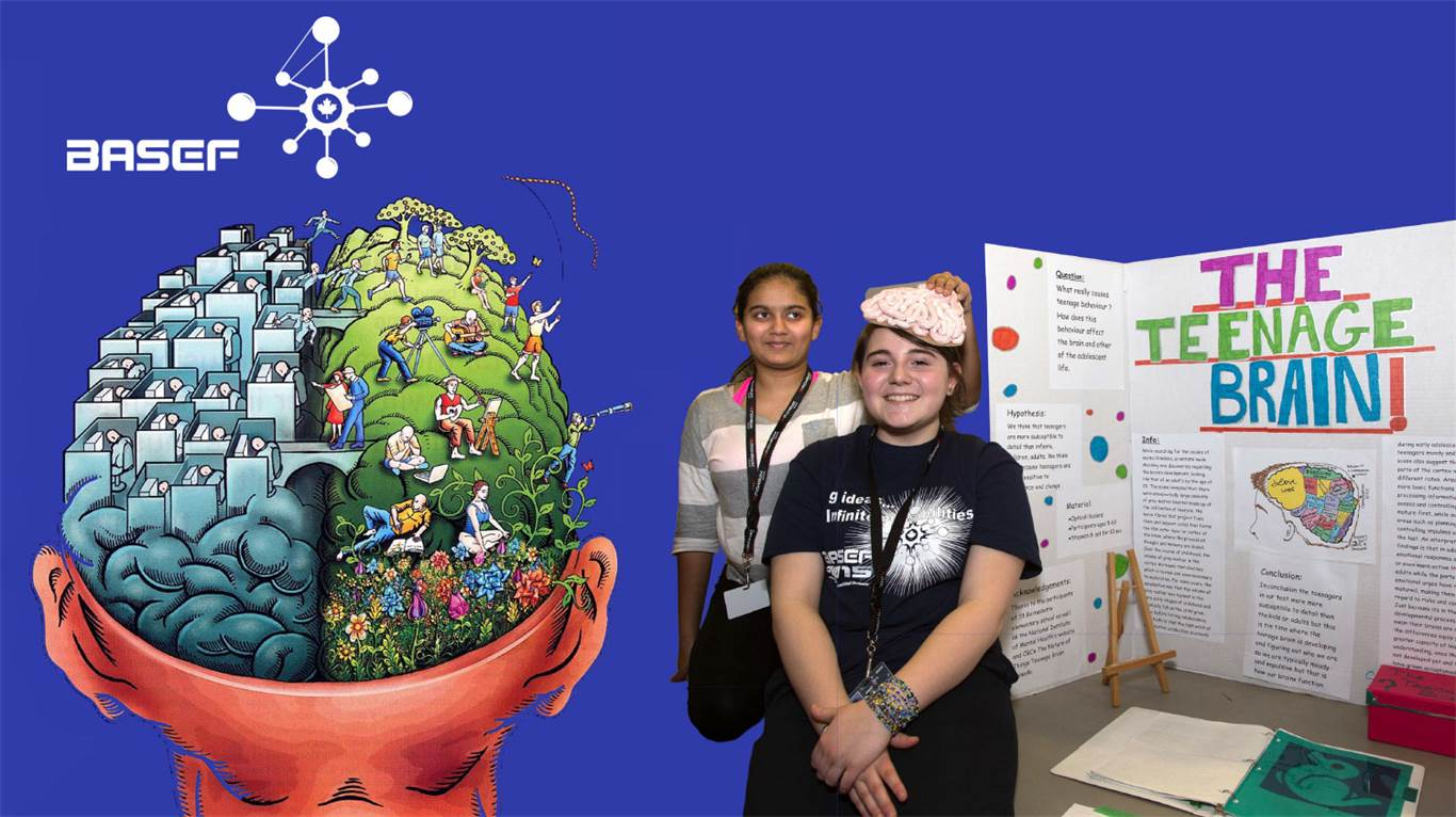 Banner Image for What's your science fair project?